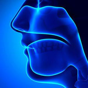 otolaryngologia